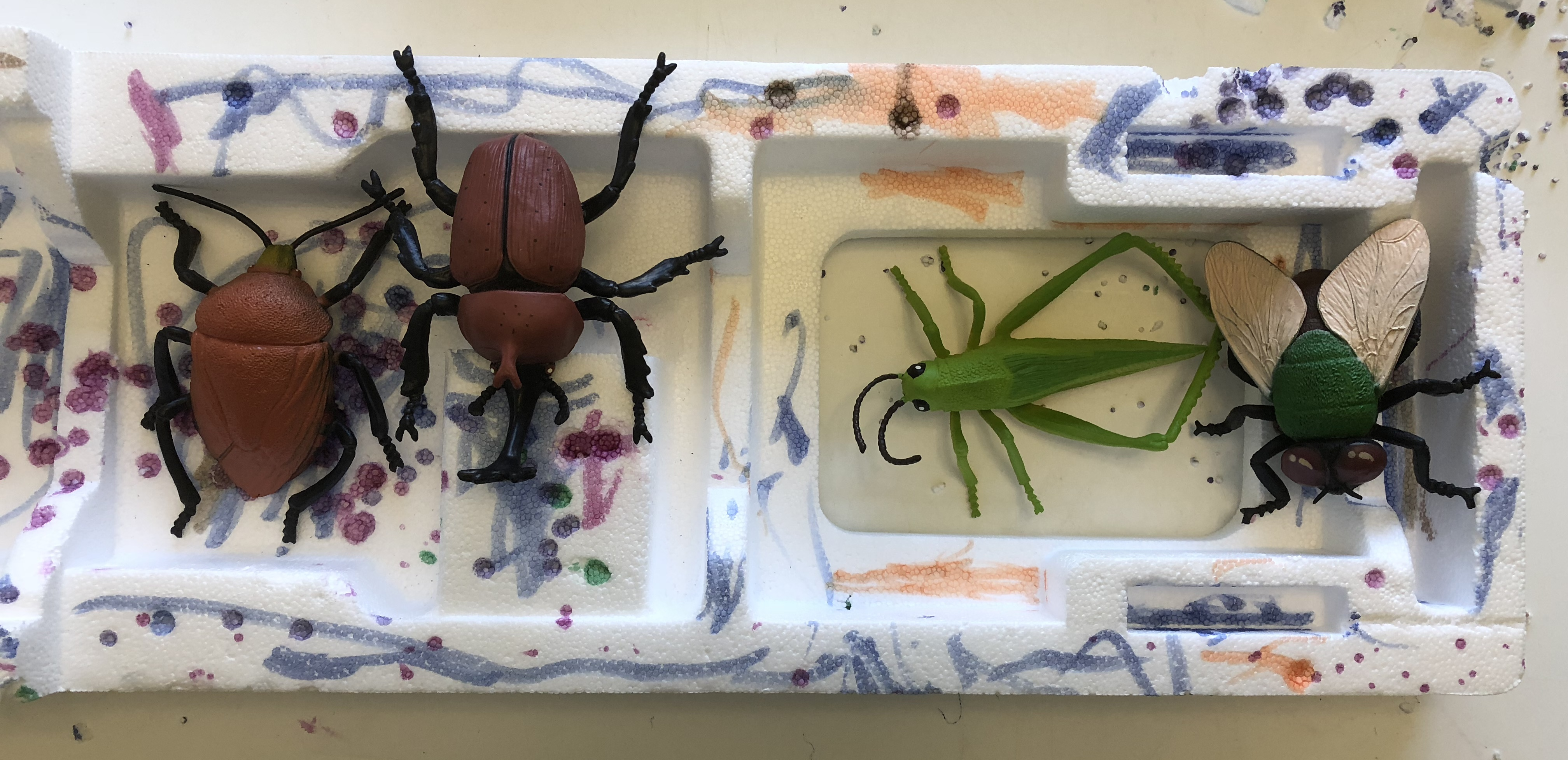 toy bug sitting in colorful styrofoam